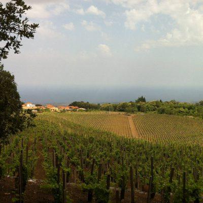 2016 – Sicily