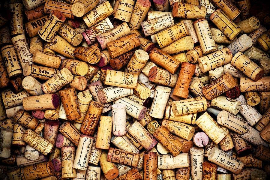 Dégustations de vin